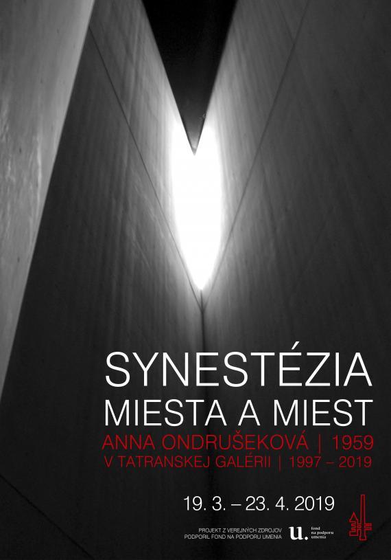 Synestezia AO 2019 webv.jpg